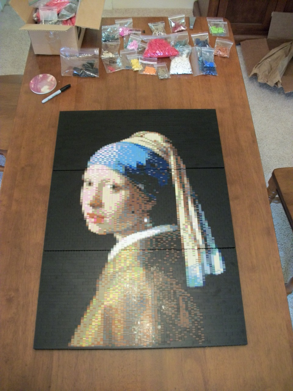 girl with the pearl earring essays